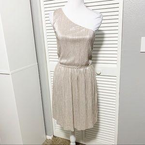 Express Champagne Shimmer One Shoulder Dress